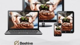 Beehive Capital Advisors – India